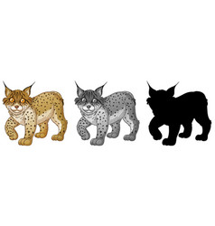 set of lynx character vector image