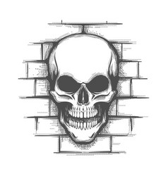 Skull on brick wall tattoo vector
