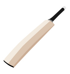 Cricket bat isolated on white isometric view vector