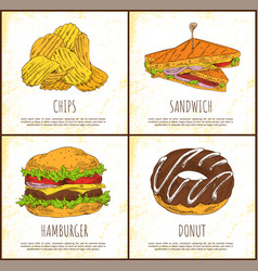 donut chips sandwich and hamburger colorful card vector image