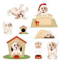puppy installed funny cartoon puppy in different vector image