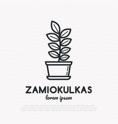 Succulent zamiokulkas in pot thin line icon vector