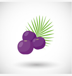 Acai berries flat icon vector