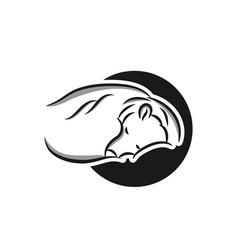 bear icon concept for design vector image