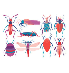 colorful insects set cute butterfly beetle bug vector image
