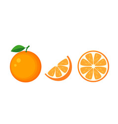 colorful whole half and slice orange with green vector image