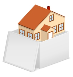house in cardboard box vector image