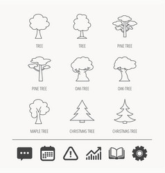 pine tree maple and oak icons christmas tree vector image