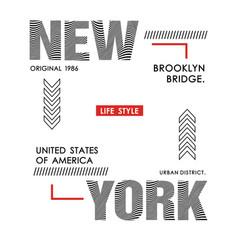 typography design new york vector image