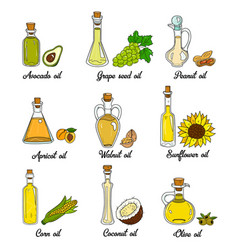 9 cooking oils in cute sketchy bottles vector