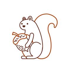 autumn season squirrel acorn forest vector image