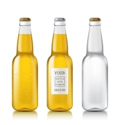 Set realistic bottles vector image vector image