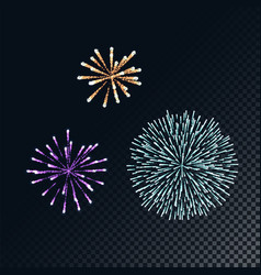 colorful fireworks concept vector image
