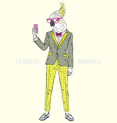 Fashion animal parrot dressed up in vintage style vector
