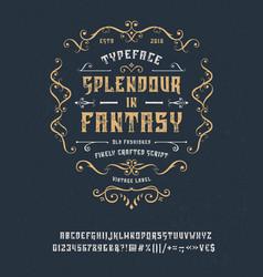 font splendour in fantasy vector image