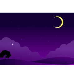 Moonlit Evening vector image