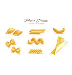 realistic italian pasta spaghetti types set vector image