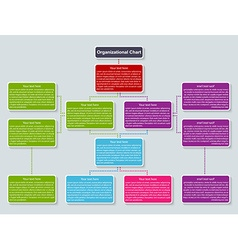 Organization chart template vector image