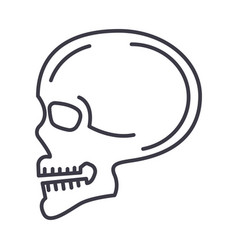 skull front view line icon sign vector image