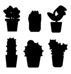 types of cactus and flowers icon set simple style vector image vector image