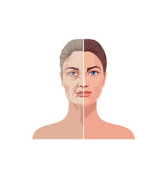 Female facial aging isolated on white background vector