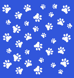 Fingerprints of the paws of vector