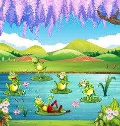 Frogs living in the pond vector image