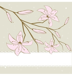 Vintage card with lily vector image vector image