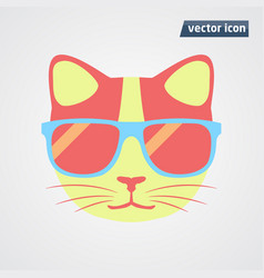 cat in sunglasses vector image