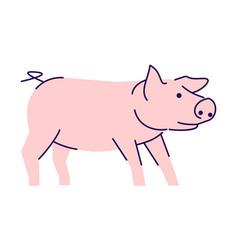 Cute pink pig side view flat livestock farming vector
