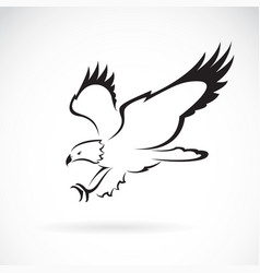 eagle design on white background wild animals vector image vector image