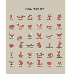Fox icons collection for your design vector image