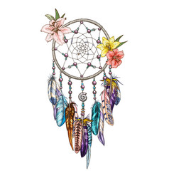 Hand drawn ornate dreamcatcher with lily flowers vector