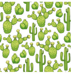 mexican edible cactus or cacti for cinco de mayo vector image
