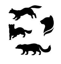 Sable animal silhouettes vector image