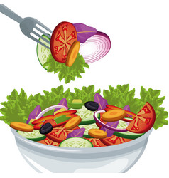 salad vegetables organic food harvest vector image