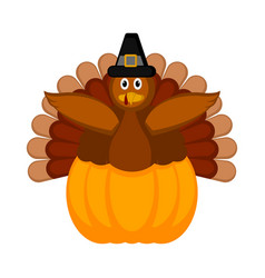 turkey with pilgrim hat and a pumpkin icon vector image