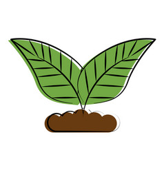 plant leaves icon image vector image vector image