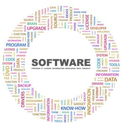 SOFTWARE vector image vector image