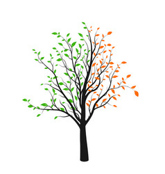 abstract tree silhouette with green and red vector image