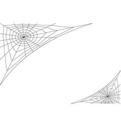 concentric white web on a white background vector image