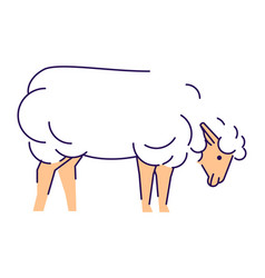 White sheep side view flat livestock farming vector