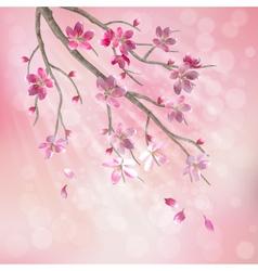 Spring tree branch cherry blossom flowers vector