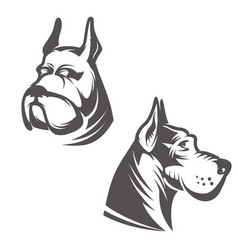 dog head isolated on white background design vector image vector image