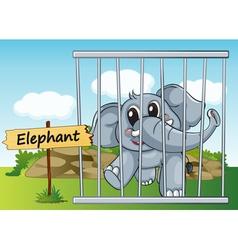 Cartoon Zoo Elephant vector