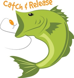 Catch Release vector