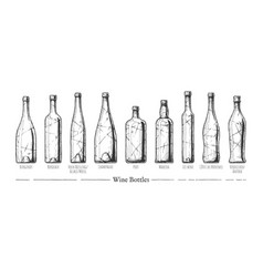 Types of wine bottles vector