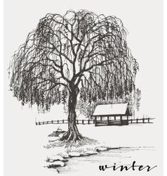 Winter sketch willow tree vector