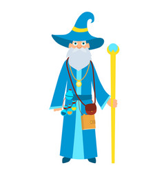 wizard with a magic stick vector image