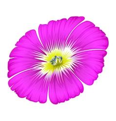 A purple flower vector